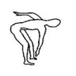 Комплексные (комбинированные) упражнения для мышц ног, брюшного пресса, спины, ягодичных